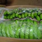 Bananas Packaging 1